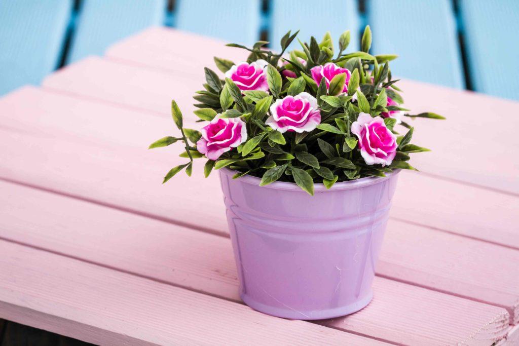 Idee per bomboniere vasi di fiori
